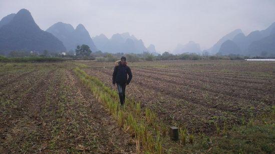 China 2017 Eine Wanderung entlang der Kegelkarstberge